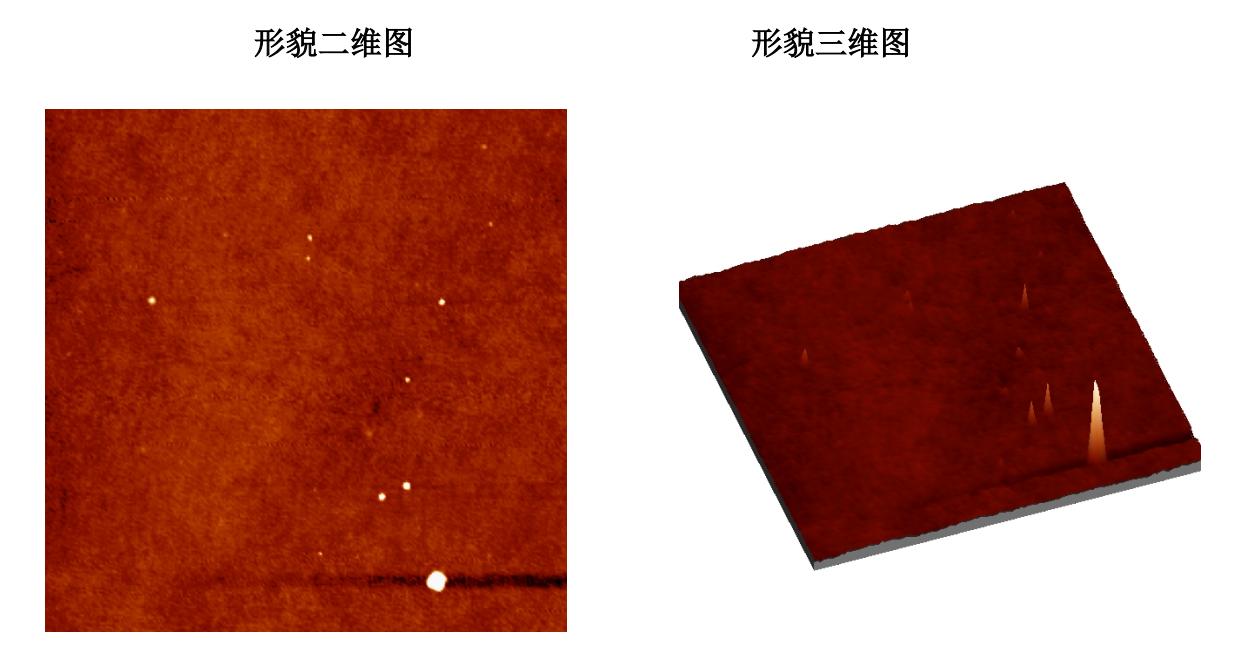 TiO2单晶力图原子像