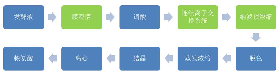 赖氨酸改良生产工艺 (2).jpg